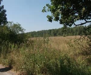 Коттеджный поселок «Малиновка-Парк»