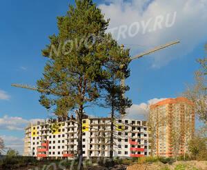 ЖК «Лесной» (Пушкинский район): 14.09.2015